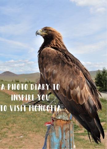 Mongolia-EAGLE.